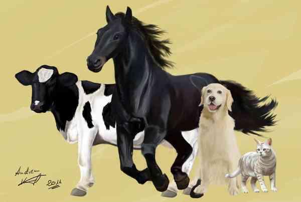 Poster Illustration mit verschiedenen Tieren