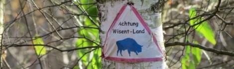 Sammelstandortschießanlage in der Döberitzer Heide?!