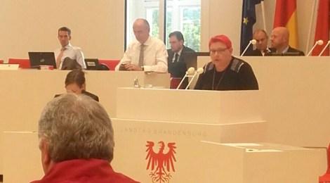 """Rede zum Antrag der CDU """"Rückführungen beschleunigen und freiwillige Ausreisen fördern"""""""
