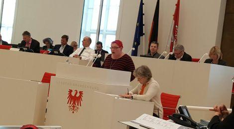 Rede zum Antrag der AfD zur Einführung einer Extremismusklausel in Brandenburg