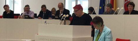 """Rede im Landtag zum Antrag """"Verbrechen gegen die Menschlichkeit an Yezidinnen und Yeziden sowie anderen Minderheiten im Nordirak wirksam verhindern und ahnden"""""""