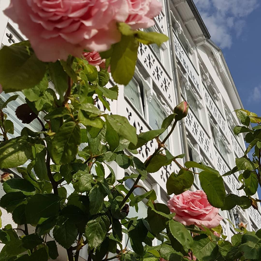 Mittwoch, 14.07.21, Trauminsel #rügen