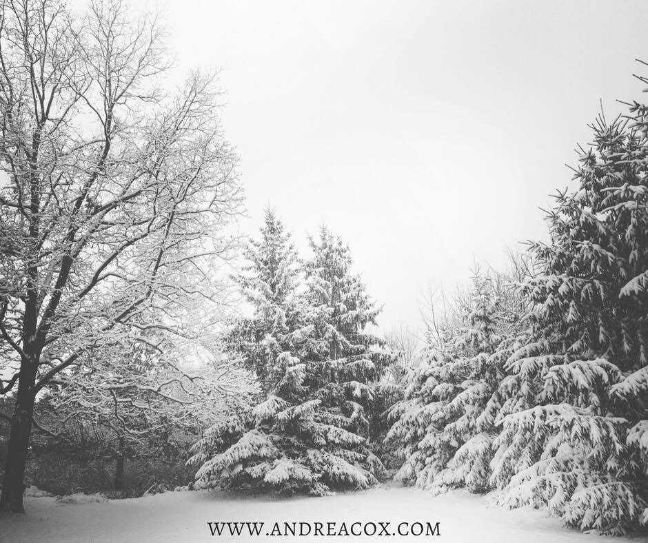 snow-day-ohio