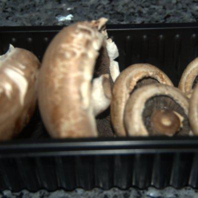 Wild field and Portobello mushrooms