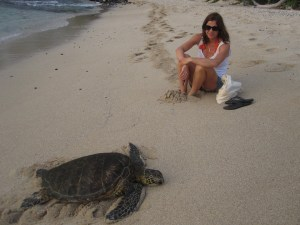 annchen and turtles