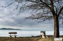 Lago Trasimeno-4
