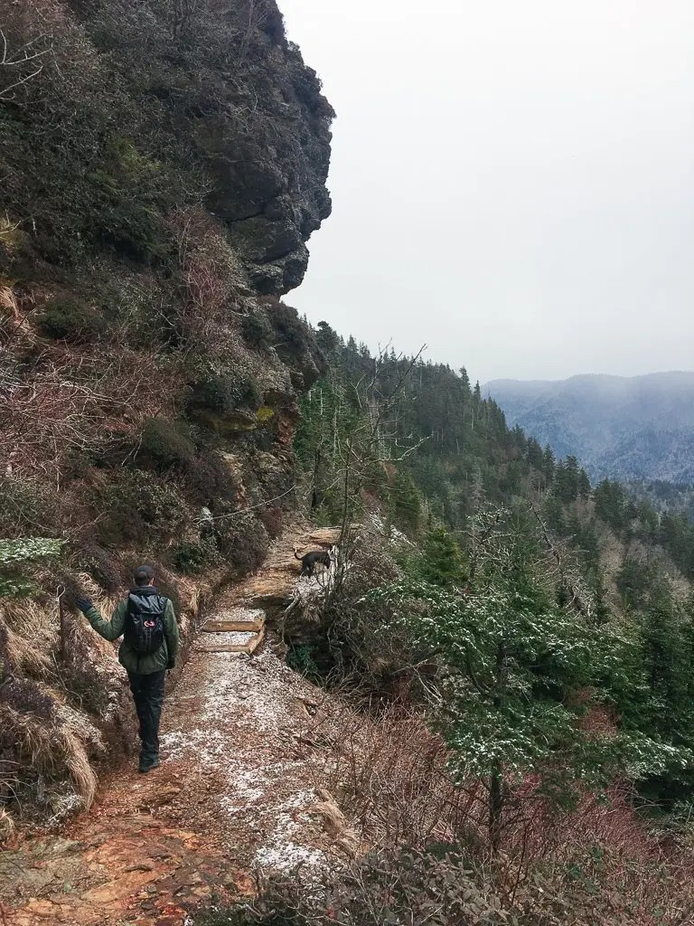 alum cave bluffs to mt leconte