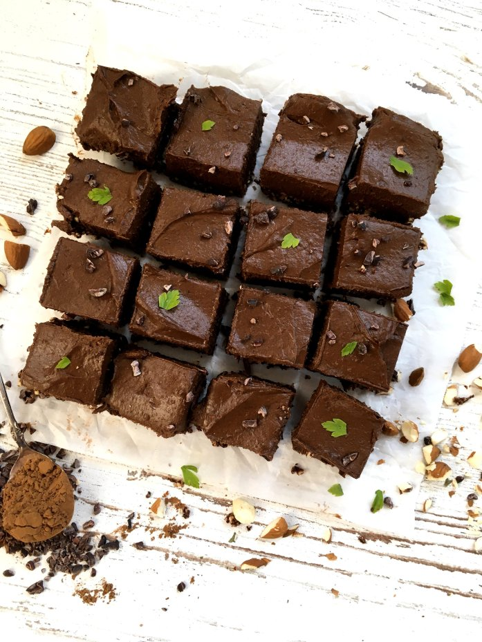 vegan no bake chocolate mint squares
