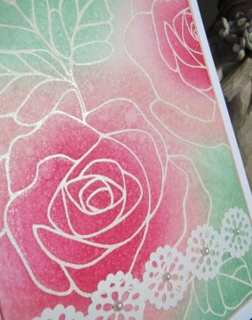 Rose Wonder SU! Feb16 (4)
