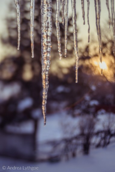 Icicles-13