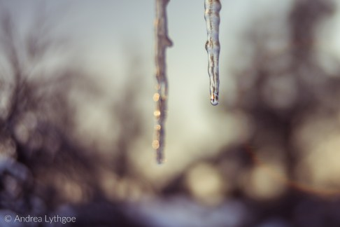 Icicles-4