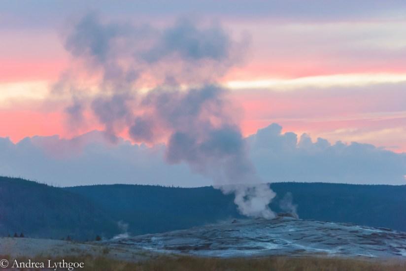 Yellowstone2015-6