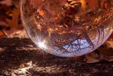 Crystal Ball Shots-4