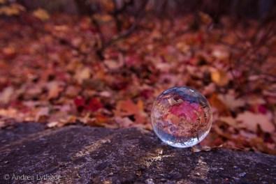 Crystal Ball crack-1