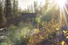 Yellowstone-1 (2)