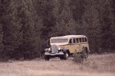 Yellowstone 2018 Big Batch-23