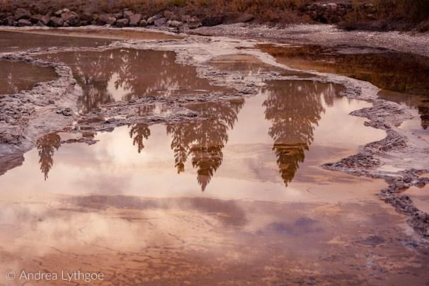 Yellowstone 2018 Big Batch-53