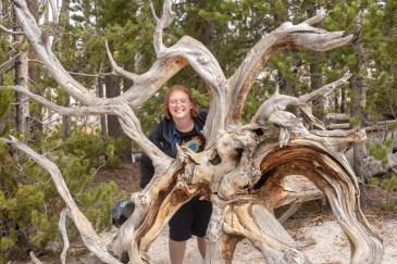 YellowstoneForFacebook-34