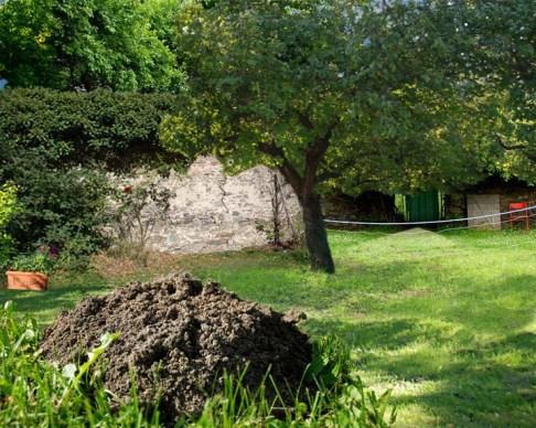 Garten Maulwurf