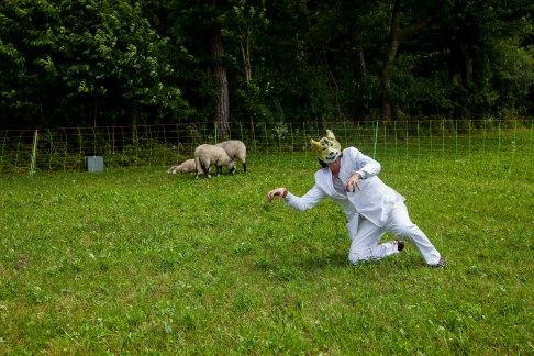 Das Lamm und der Wolf Session Brunn 05072014 FLICKR 116