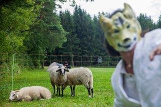 Das Lamm und der Wolf Session Brunn 05072014 FLICKR 145