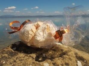 panetteria tassi castiglion del lago meringa gigante (3)