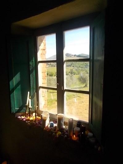 slow flowers podernovi chianti castello di brolio (18)