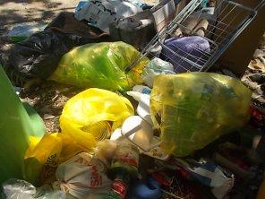 guistrigona rifiuti sulla strada (25)