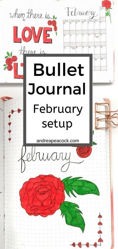 February bullet journal setup