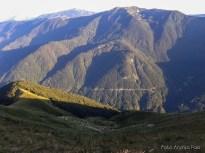 Gregge di pecore sul versante Sud del Monte Guarda