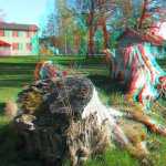Old tree stumps... in 3D! Funny how it can make mundane pictures more interesting, eh?