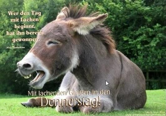 SCHÖNenDonner-s-TAGgewünscht69