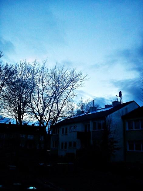 Baum--HORCHwasDAkommenMAG--GEFLÜSTER1