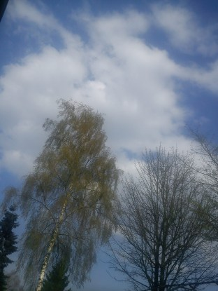 Regen--BOGEN--mystische--GARTEN--IDYLLE--WÖLKchen16