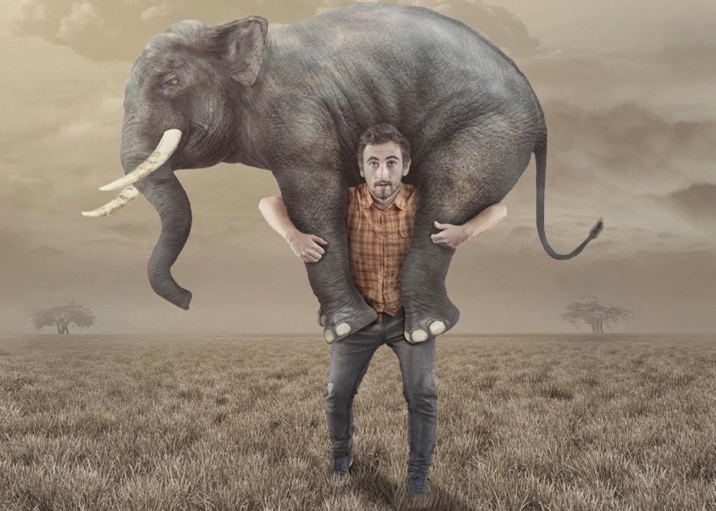 Mann trägt Elefant Andreas Mittlböck Beziehung Beziehungsprobleme Man takes an elephant back