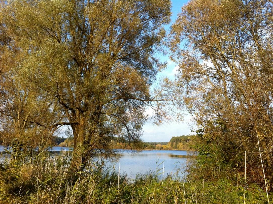 Borker See im Sommer