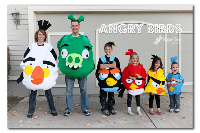 Angry Birds family costumes