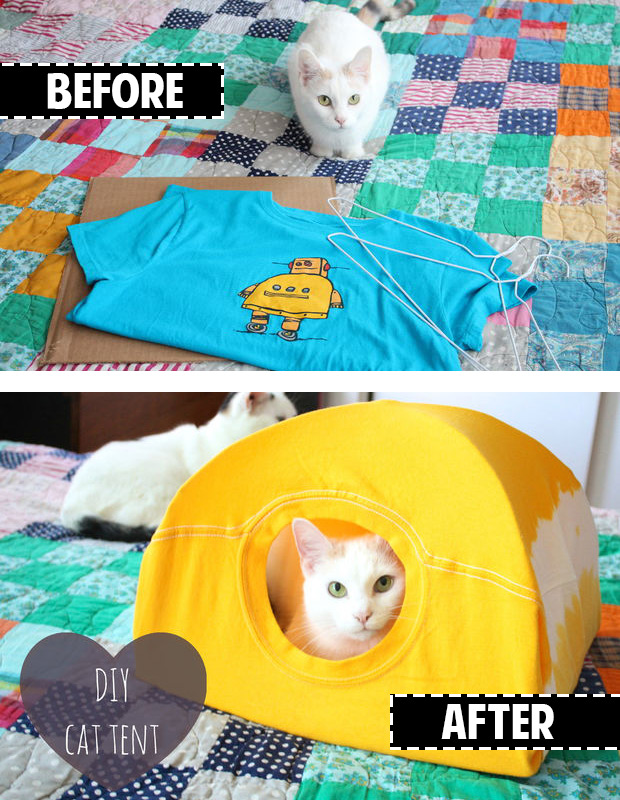 So easy!! Make a cat tent out of a t-shirt and hanger!!