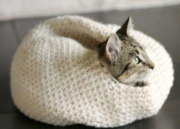 Tutorial: Super Bulky Crocheted Cat Bed   Camas de gato, Casitas ...   500x700