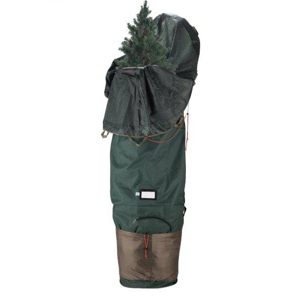 Tree storage solutions