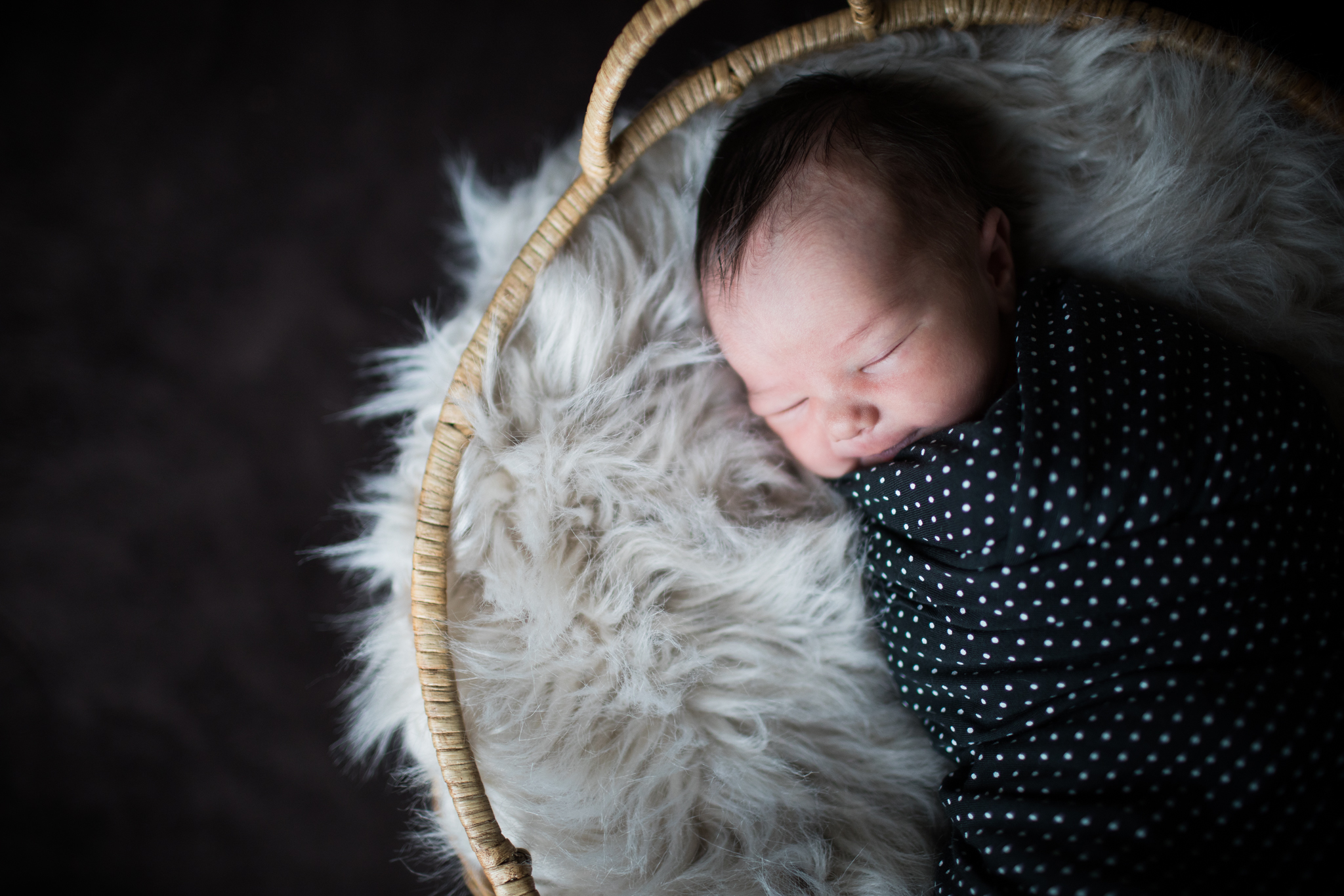 Olivia Newborn Photography