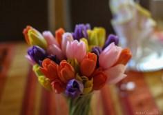 Fleurs de Paques