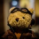 teddy_bear 003