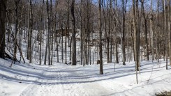 Sentiers des lacs - Mont St-Bruno