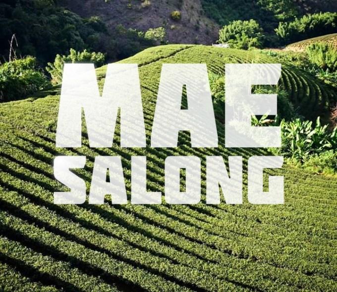 Chiang Rai and Mae Salong, Thailand, travel