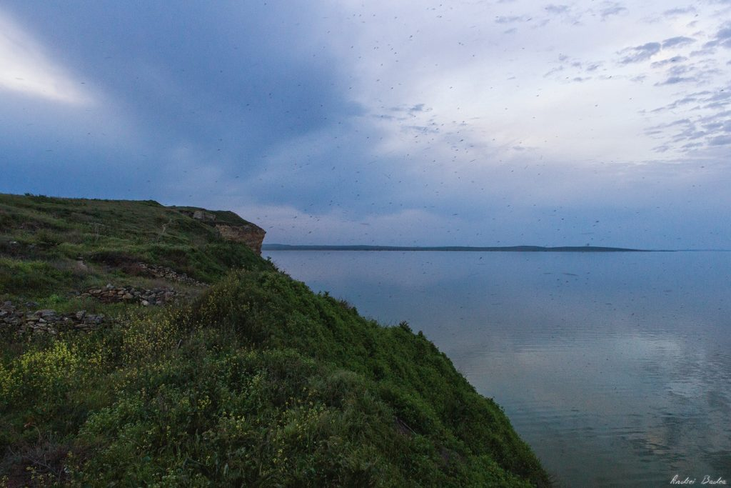 80 - Waves of History. Bike Touring in Dobrogea