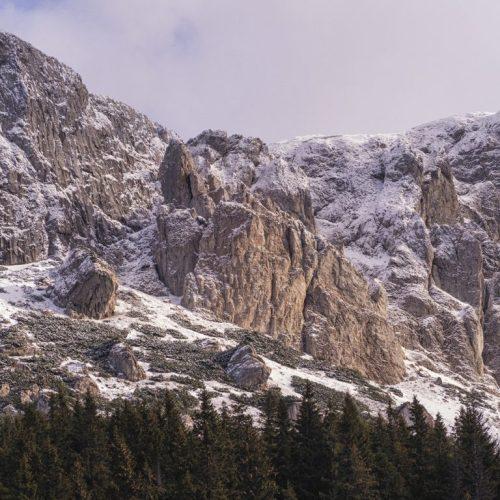 12 500x500 - Iarna în Bucegi, la Strunga