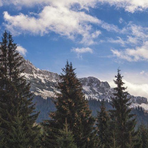 5 500x500 - Iarna în Bucegi, la Strunga
