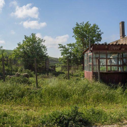56 500x500 - Istorie și maci în Dobrogea, spre Adamclisi