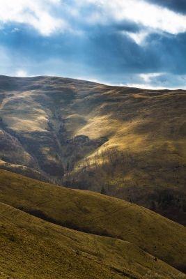 Câmpuri de aur. Munții Baiului